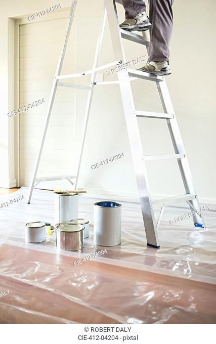 Man climbing ladder to paint room