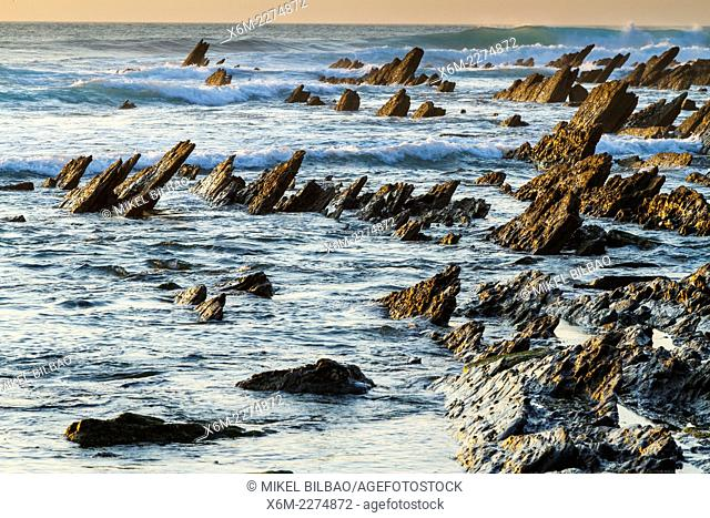 Rocky shore. Meñakoz cove. Barrika, Biscay, Basque Country, Spain, Europe