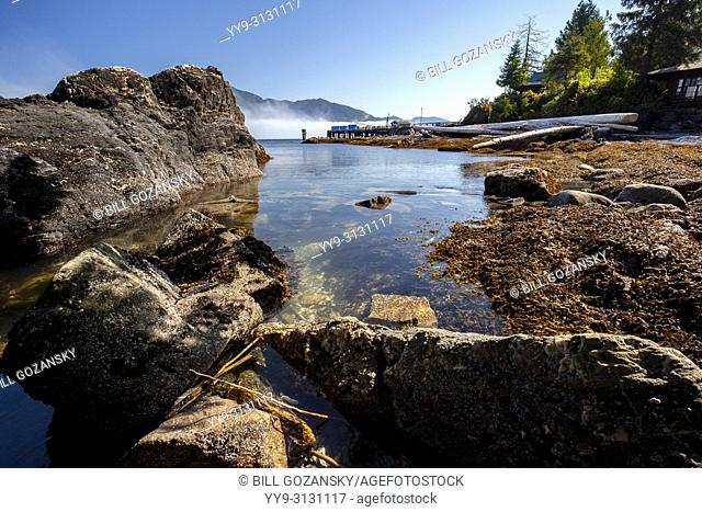 Rocky coastline view at Port Renfrew, Vancouver Island, British Columbia, Canada