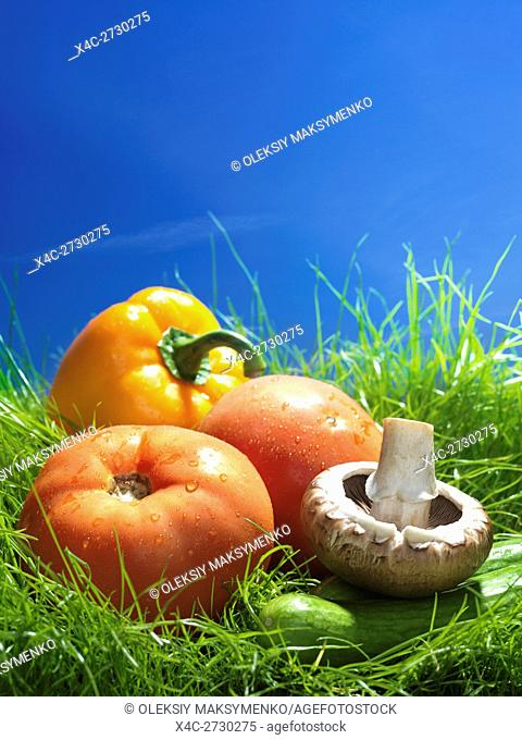 Colorful fresh vegetables, field tomatoes, cremini mushrooms, pepper and cucumbers in green grass under blue sky artistic food still life