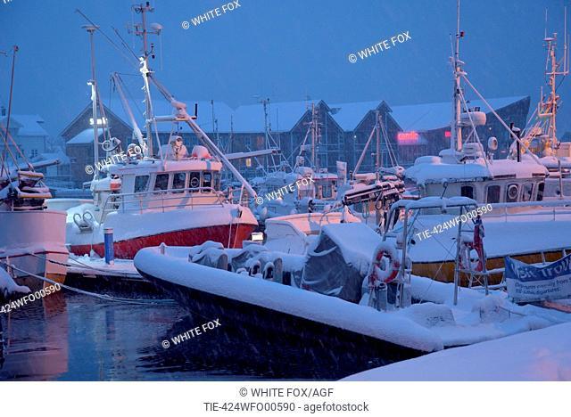 Norway, Lofoten, Svolvaer port under a snowfall