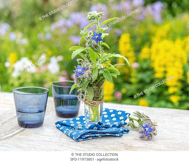 Borage in a glass of water on a garden table