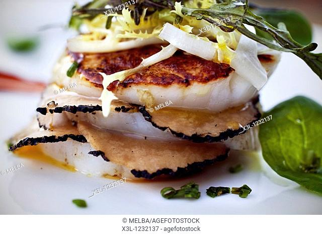 Millefeuille of scallop, summer truffles and bitter salad with romesco  Molinos de Duero, Soria  Castile-Leon  Spain