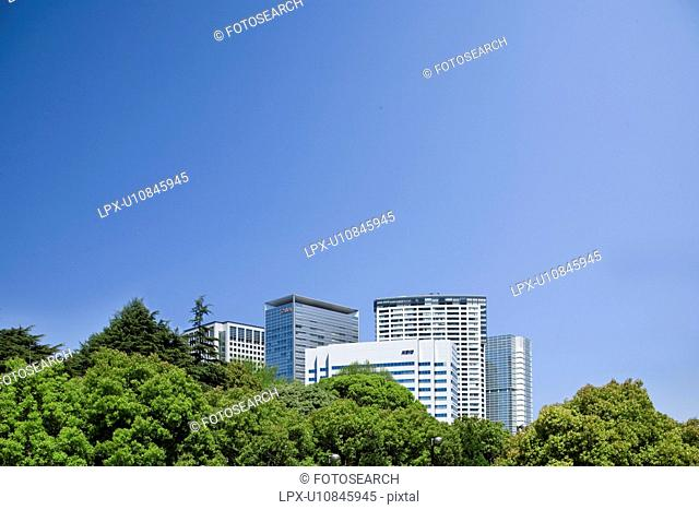 High rise buildings and trees under sky, copy space, Tokyo prefecture, Japan