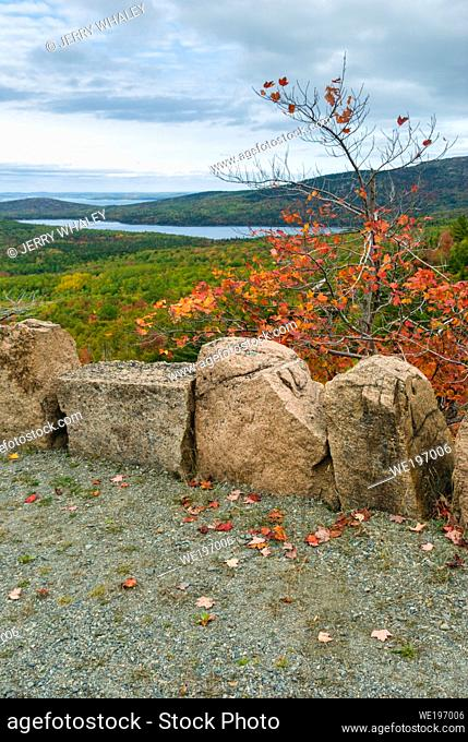 Autumn Views on Carriage Roads in Acadia National Park on Mount Desert Island in Maine, USA