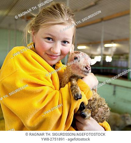 Young girl with a newborn sheep on a farm, Iceland