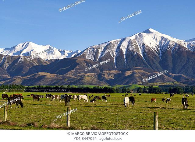 South Island New Zealand. The Alps
