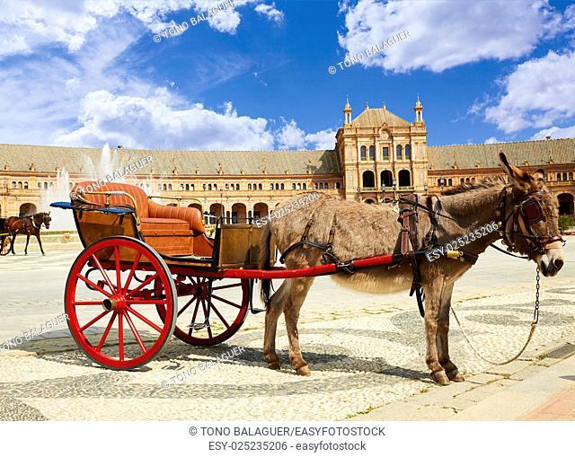 Seville Sevilla Plaza de Espana donkey carriage in Andalusia Spain square