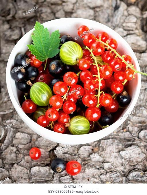 Fresh currants berries in bowl. Healthy food background