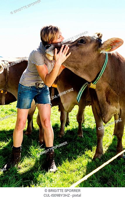 Woman bonding with herd of cows on field