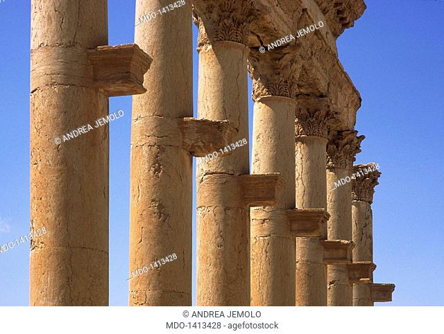Great columnade, 2nd Century a.C., about 1100 m, pavement 11 m. Syria, Palmyra. Detail. The shelves that supported statues representing dignitaries