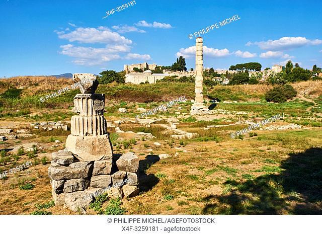 Turkey, Izmir province, Selcuk city, archaeological site of Ephesus, temple of Artemis
