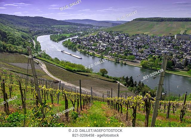 Germany, Moselle, Bernkastel Kues. The Moselle is a river flowing through France, Luxembourg, and Germany. It is a left tributary of the Rhine