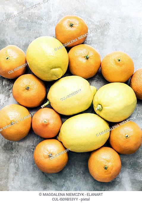 Studio shot, overhead view of oranges and lemons