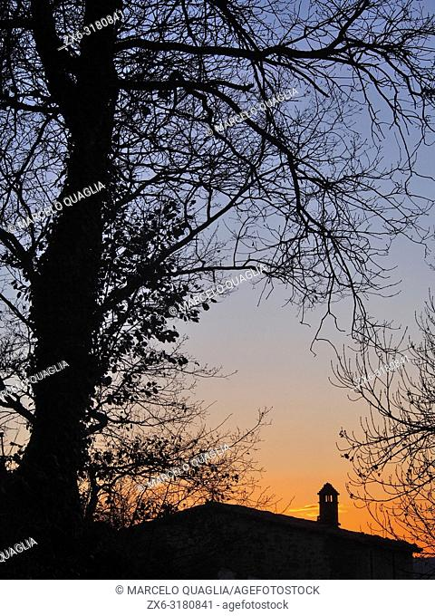 Backlit tree at dawn with house and chimney. Lluçanès region, Barcelona province, Catalonia, Spain