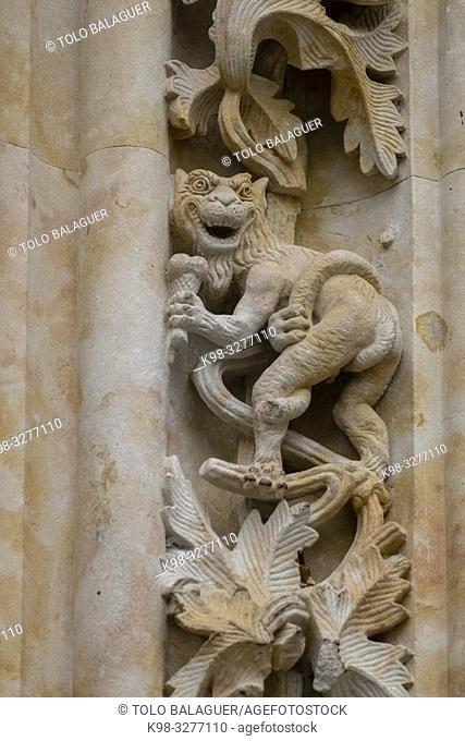 figura , puerta de Ramos, Catedral de la Asunción de la Virgen, Catedral Nueva, Salamanca, comunidad autónoma de Castilla y León, Spain