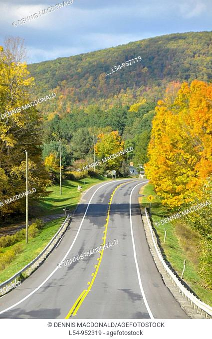 Road with fall colors Finger Lakes Region New York