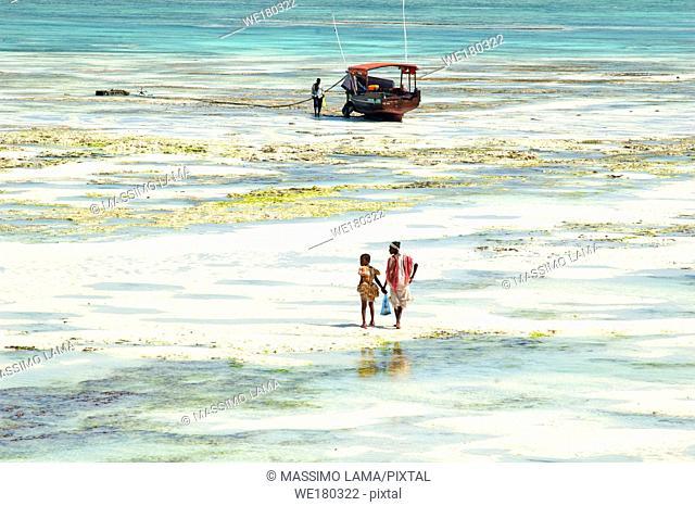 Women fishing polyps with low tide in Zanzibar