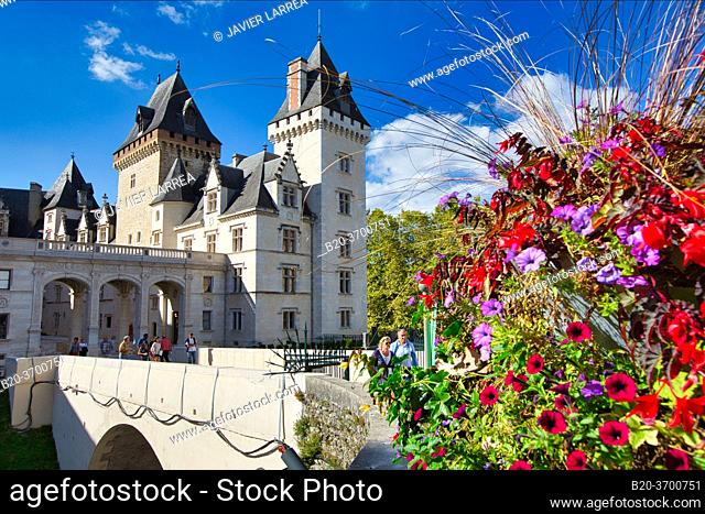 Chateau of Pau, Pau, Pyrenees - Atlantiques, Aquitaine, France