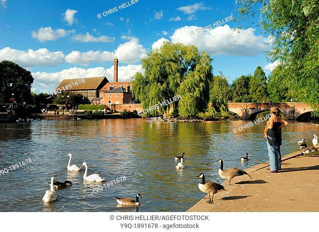 River Avon at Stratford-upon-Avon Warwickshire England