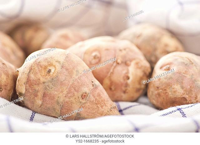 Closeup of raw Jerusalem Artichokes