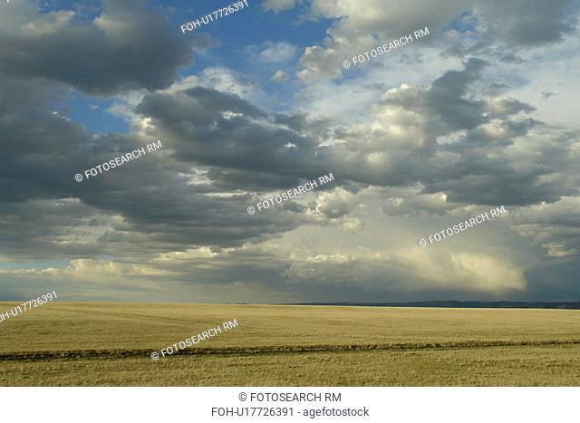 Albany County, WY, Wyoming, prairie, rain clouds, open range