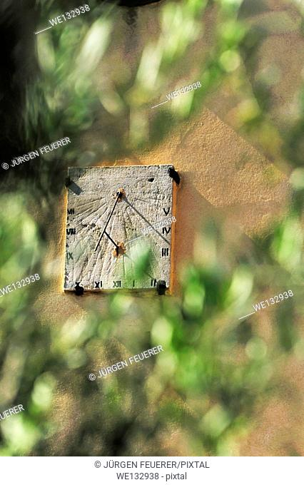 Sundial and olive tree in the Provence, France