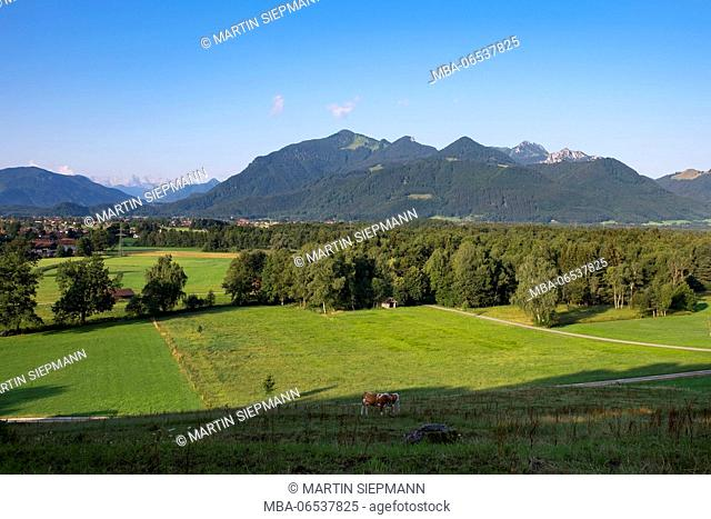 Kendlmühlfilzen near Grassau, Hochplatte and Kampenwand, view from Wetserbuchberg, Chiemgau Alps, Chiemgau, Upper Bavaria, Bavaria, Germany