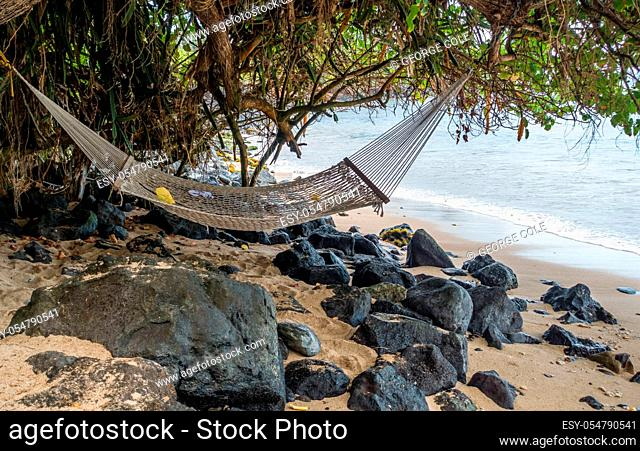 A hammock hangs from a tree on the shore in Kahana on Maui, Hawaii
