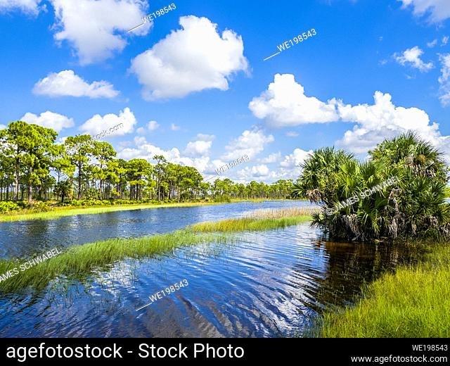 Webb Lale in the Fred C. Babcock/Cecil M. Webb Wildlife Management Area in Punta Gorda Florida USA