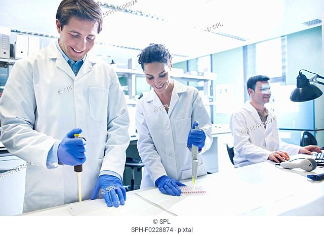 Scientists using pipettes in the laboratory