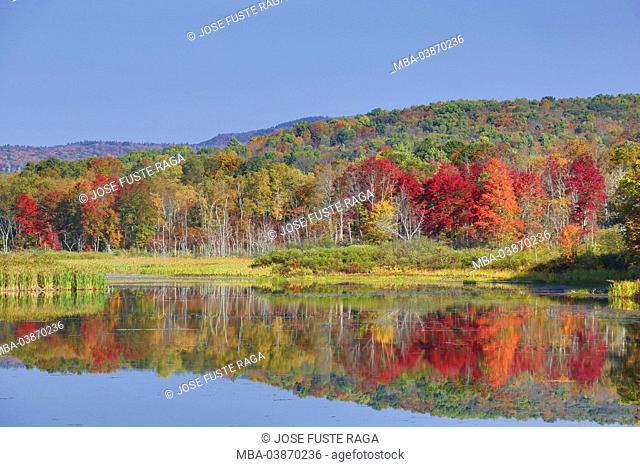 USA, Massachusetts, Berkshire District, Shakers Pond