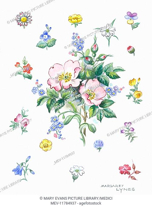 Bunch of wild roses surrounded by sprigs of forget-me-nots, daisies, buttercups and other wild flowers