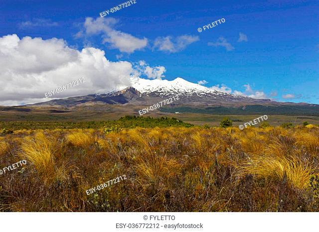 Mt. Ruapehu volcano - New Zealand
