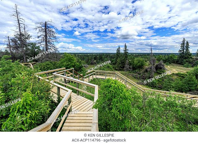 Wooden boardwalks leading to the Spirit Sands, Spruce Woods Provincial Park, Manitoba, Canada