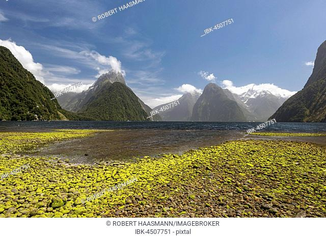 Mitre Peak and Mount Kimberley, Milford Sound, Fiordland National Park, Southland, New Zealand
