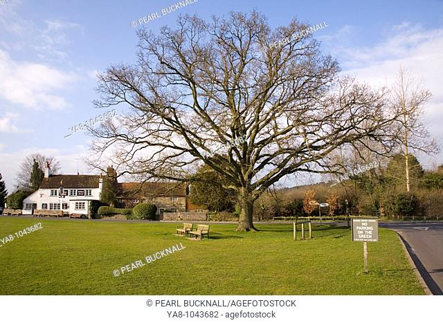 Tilford Surrey England UK Europe  Village Green in spring with 'The Barley Mow' public house and old cottages beyond the Oak tree in picturesque old village