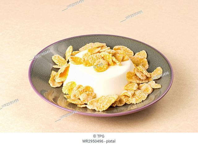 White milk pudding with sweet crisp, panna-cotta