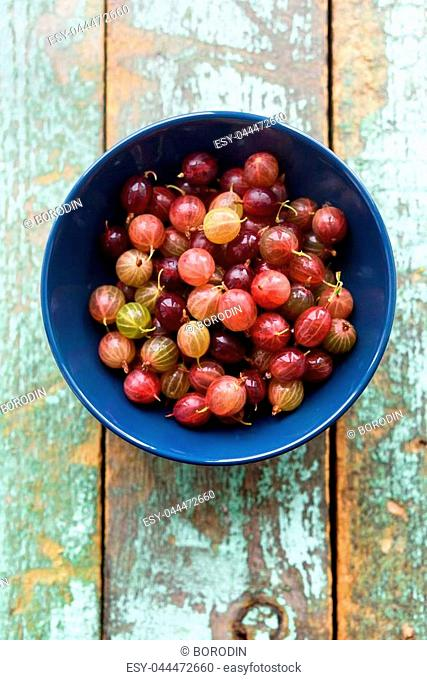 Organic berries. Pink gooseberries in blue bowl on shabby blue wooden background copyspace top view