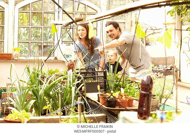 Smiling family of three in greenhouse