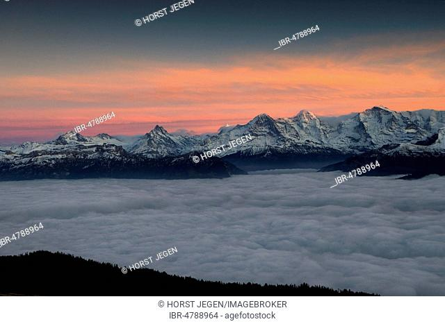 Mountain range Above the clouds, view of Eiger, Mönch and Junfrau mountains with snow, seen from Niederhorn, afterglow, Canton Bern, Switzerland