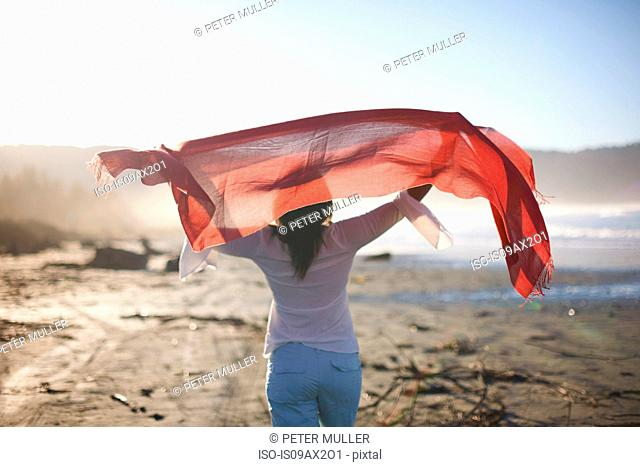 Rear view of woman holding up red scarf on beach at sunset, Cresent City, California, USA