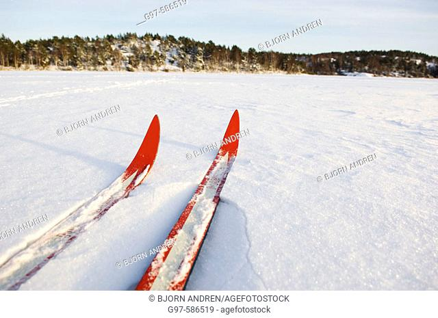 Red skis. Cross-country. Sweden