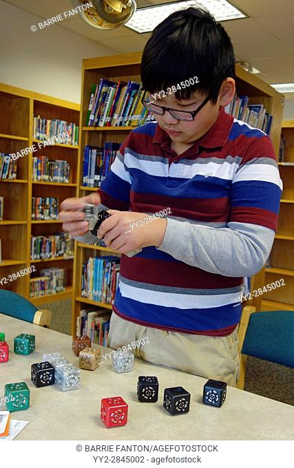 6th Grade Boy Working With Robotics, Wellsville, New York, USA