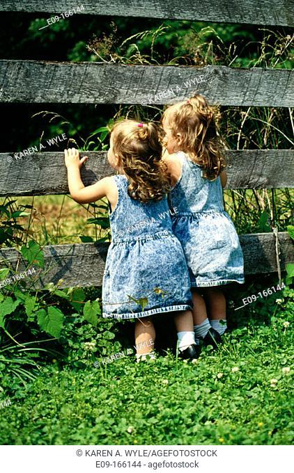 Twin toddler girls in denim dresses, looking between slats of wooden fence