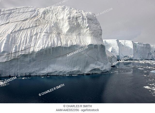 Tabular icebergs in the South Weddell Sea, Antarctica 20081231 ()