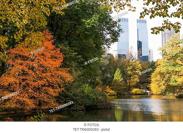 View of Central Park in autumn