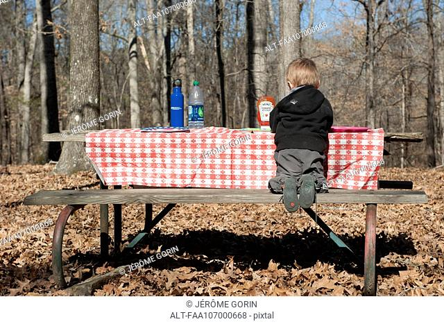 Boy sitting at picnic table, rear view