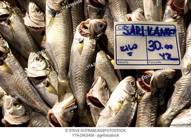 Display of Fresh Fish, Galatsaray Fish Market, Beyoglu, Istanbul Turkey