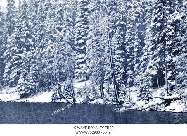 Elbow Lake at Elbow Pass, Peter Lougheed Provincial Park, Alberta, Canada